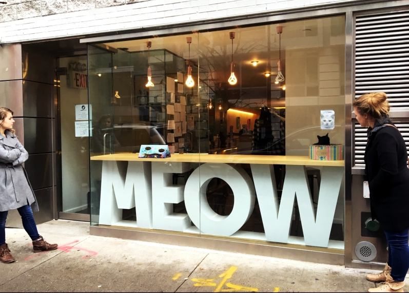 Meow Parlour, 46 Hester Street, NYC