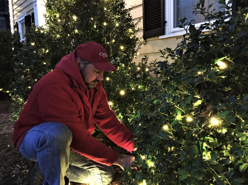 shrub holiday lights-Picture Perfect Christmas Decorators (25)
