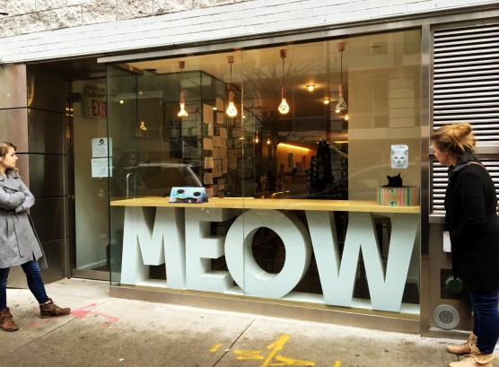 Cat Cafe One
