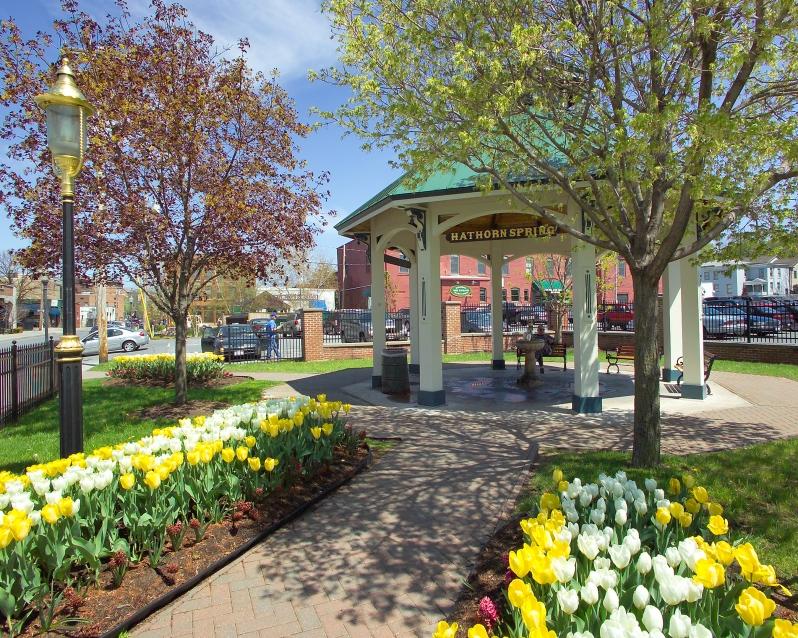 Hathorn Spring-B