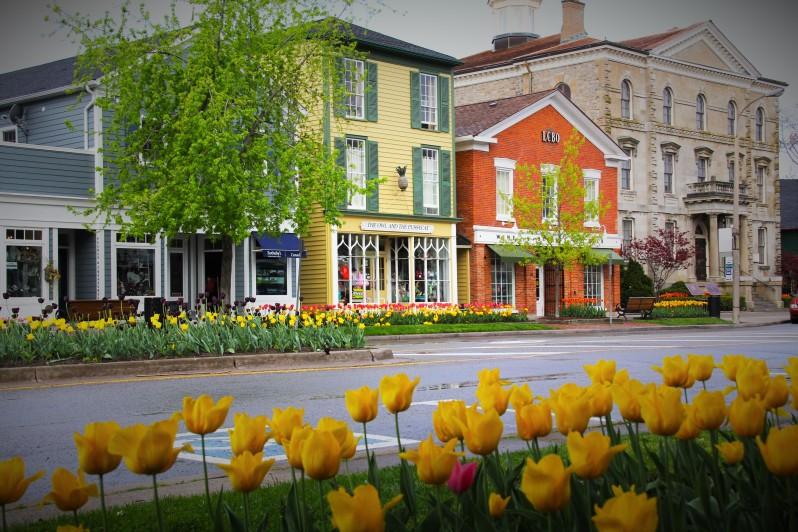 2012 NOTL spring flowers 012
