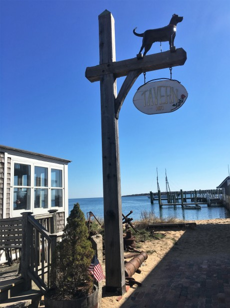 Black Dog Tavern Vineyard Haven