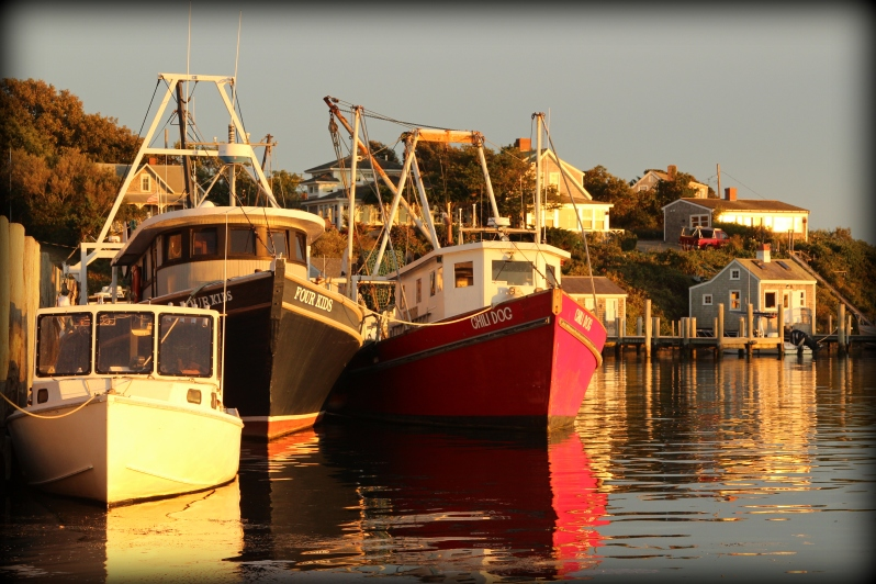 boats in Menemsha in Autumn (P. Simon)